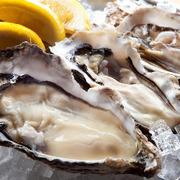 自信をもっておすすめする生牡蠣食べ比べ!産地で異なる味わいをお楽しみ下さい。  ■期間限定1299円⇒999円に!