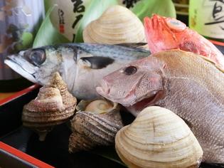 鮮度と季節感にこだわり買い付けされる、脂が乗った鮮魚