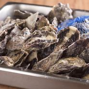 竹原市の南に浮かぶ大崎上島産のストライプオイスターは、牡蠣の本場であるフランスと同じ養殖法を採用し、塩田跡の池で一定期間育てられた牡蠣です。海水育ちの牡蠣に比べ、まろやかなコクと旨みが楽しめます。