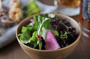 みずみずしく、歯ざわり抜群。朝採れ・畑直送の『三浦野菜のサラダ』
