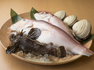 近県で獲れる旬な食材ふんだんに使った和食料理