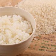 米農家から直接仕入れている「ゆめぴりか」が食べ放題。新米の時期は稲を刈ってから、1週間以内に仕入れているというから格別フレッシュなご飯を堪能。精米したばかりのお米本来の旨みを噛みしめられます。