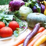 生産者の元へシェフが足を運び選ぶ野菜と魚介が中心