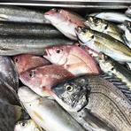 締め方がうまい魚屋さんから、毎日届く魚介