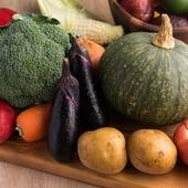 お肉を彩る野菜は枚方産