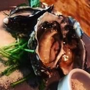 NZ産生牡蠣(1個)