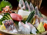 天然魚・活魚ふじけん中洲店
