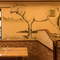 店内を彩る壁面アートに注目。ナチュラルでおしゃれなステーキ店