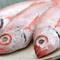 市場から直接仕入れた新鮮な鮮魚