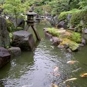 季節を映し出す日本庭園。四季折々の風情あふれる空間
