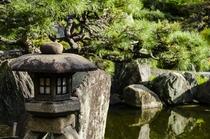 季節の移ろいを感じられる美しい日本庭園