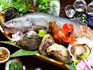 鮮度の良い魚介類と契約農家から届く新鮮野菜
