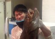 大阪中央卸売入り場で早朝から勤務している店主が、厳選して仕入れた鮮魚を、その時期最も美味しい調理法て提供しています。詳細は店主に問い合わせください。