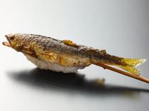 ホロホロした身が口の中でほどける『琵琶湖の稚鮎』