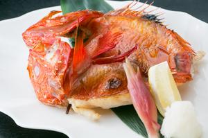 白身魚の中でも格段に脂の乗りが良いきんきをシンプルに塩で焼き、旨味を引き出した絶品料理『きんき焼き』