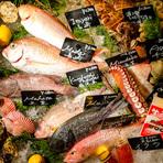 全国各地の産地、築地から仕入れたとびきり新鮮な旬の魚介が15種類前後並ぶアイスベッド。ゲストは好きな魚介をここから選び、料理人と相談して、食べたいように注文が可能。どんな料理にするか考える時間も楽しい!