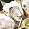 質の良い牡蠣が堪能できる