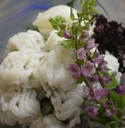 【メニュー例】 ・先付け ・お出汁で愉しむ鱧たっぷりの鱧すき (季節のお野菜、生麩、生湯葉など)  ・ぞうすい ・果物