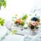 日高の食材たちが共演する前菜『日高産タコのカルパッチョと日高野菜たちの共演』