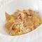 トリュフの風味とお米の味わいが絶品『白トリュフのリゾット』