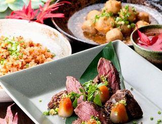 創作料理の数々。新宿店は産地直送の新鮮食材を使用