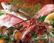 <長浜市場直送の高級魚・魚介類・季節の厳選食材>