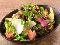 彩野菜のガーデンサラダ