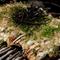 グルテンフリーのお好み焼き『名物ATSUME焼き』
