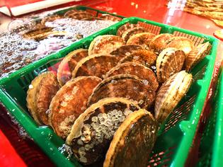 北海道・函館など全国各地から魚介類を直送、巨大な生簀で管理