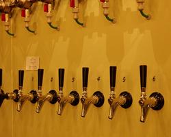 クラシックコースの飲み放題にクラフトビール8種類の飲み放題付き!