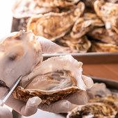 専門業者より仕入れた、美味しくて新鮮な牡蠣