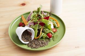 【Green Cafe&Bar】ならではの逸品『農園風サラダ』