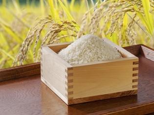 自分を育ててくれた「おばあちゃんのお米」の美味しさを大切に!