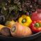 自家農園の野菜など、選りすぐりの食材