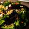 グルメ通の方や、海外経験の豊富な方にも紹介したいNZ料理