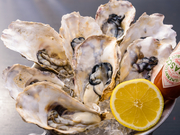 牡蠣生産量で日本一を誇る、広島産の牡蠣を仕入れられた時だけ提供される、生ガキ。大きな粒でプリッとした食感、そして濃厚な味わいが特徴的です。写真は8個ですが、2個から注文可能。