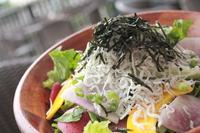 湘南といえば「しらす」!!  採れたて野菜と共にひと味違った和風サラダに仕上げました。フレッシサラダに次ぐ人気サラダです!
