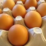 カンナンファームさんの やまぶき卵