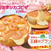 夏限定!『旨辛チーズフォンデュ』or『冷製チーズフォンデュ』♪
