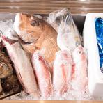 【炉ばた髙】では旬の鮮魚の美味を、できるだけ安く仕入れてお手頃な価格で提供していきます。初夏にはすっぽん鍋、冬にはふぐ鍋も登場しますのでお楽しみに!