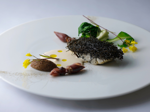 海と大地の恵みを味わい尽くす『加能蟹と自然栽培の人参の全て』