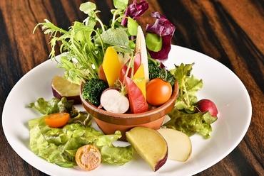 彩り豊かな『植木鉢のバーニャカウダ菜園仕立て』
