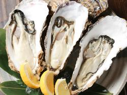 「牡蠣の酒蒸し」「牡蠣しゃぶ」など、牡蠣をたっぷりとご堪能いただける、まさに牡蠣のフルコースです!