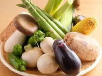 「まこもだけ」や「ベビーコーン」などの新鮮な野菜