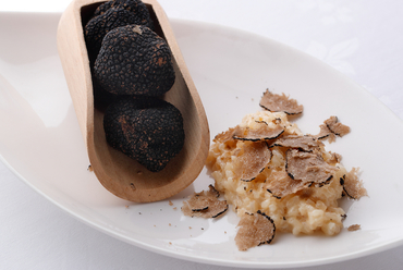 定番でありながら、季節限定の味。旬のトリュフが香る『定番フレッシュサマートリュフリゾット』