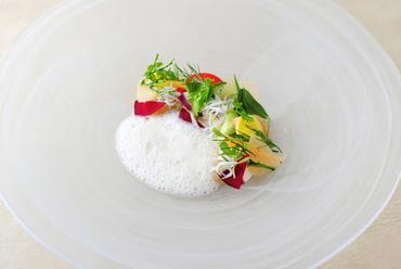 相模湾を表現した『平塚沖釜揚げシラスと平塚野菜のサラダ 鵠沼魚醤のソースで』