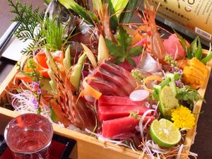 その日仕入れの新鮮魚介がたっぷり『本日の鮮魚 豪華5点盛り合わせ』