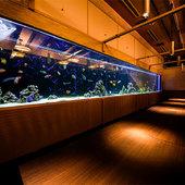 カラフルな熱帯魚を眺めながら過ごせるAQUARIUM個室完備