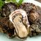 クリーミーでフレッシュな『輪島産 岩牡蠣』
