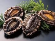 源氏コースにアワビ料理が付いたお得なコース料理です。